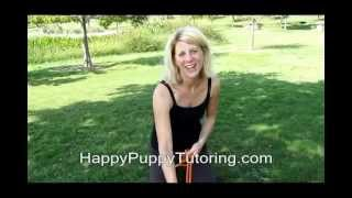 Puppy And Dog Training Austin Texas