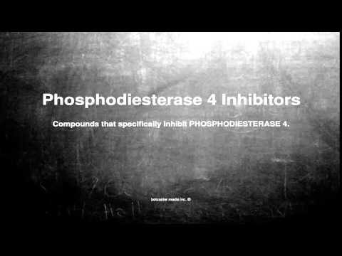 Medical vocabulary: What does Phosphodiesterase 4 Inhibitors mean