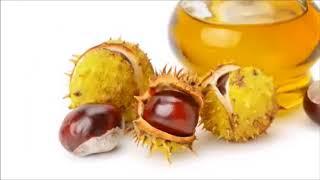 Horse Chestnut Benefits