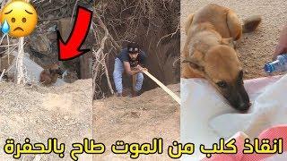 انقاذ كلب من الموت بعد ماطاح بالحفرة !!!😢💔😱