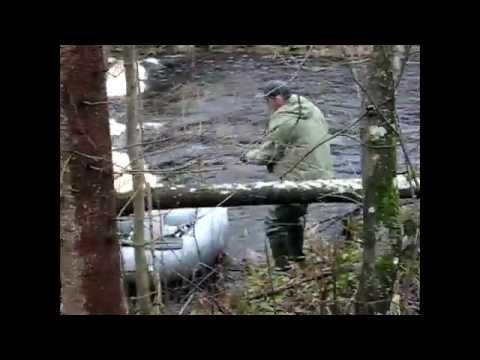 рыбалка лен обл в кировске
