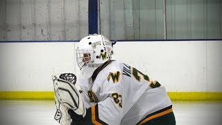 St. Rita vs. Waubonsie Valley, Hockey // 11.07.17 thumbnail