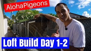 Homing Racing Pigeon Loft Construction Day 1 & 2