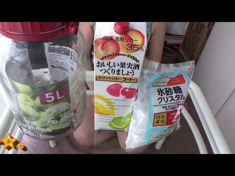 梅酒の作り方(How to make Ume liquor)