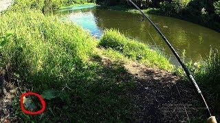 Как правильно новичку выбрать хороший спиннинг для рыбалки на хищника и не переплатить