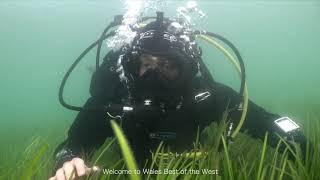 Cymru Gorau'r Gorllewin | Wales Best of the West Series Trailer