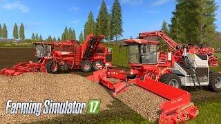 Farming Simulator 17 - Beet Harvest (Holmer Terra DOS T4-40 & Felis 2 ECO Loader)