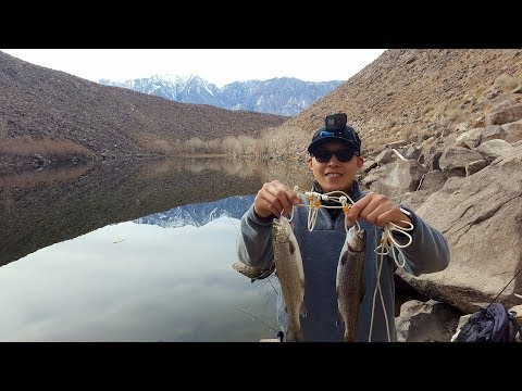 Fish Springs Hatchery and Pleasant Valley Reservoir Trout Fishing
