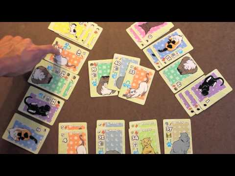How to Play Nine Lives Card Game