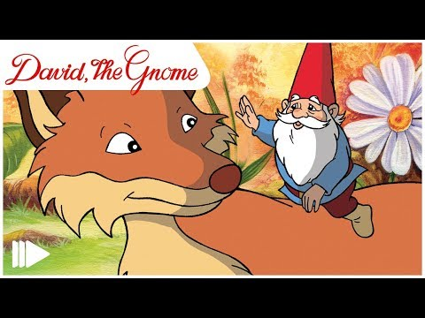 David, the Gnome - 04 - The baby troll  | Full Episode |