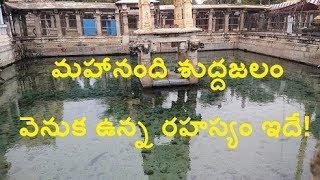మహానంది శుద్ధజలం వెనుక రహస్యం ఇదే !/The Secret of Mahanandi pure water