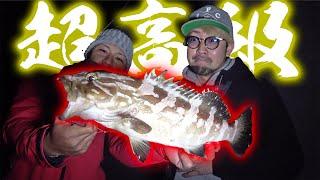毎投35cmの大アジが釣れる堤防で幻の高級魚が釣れた!