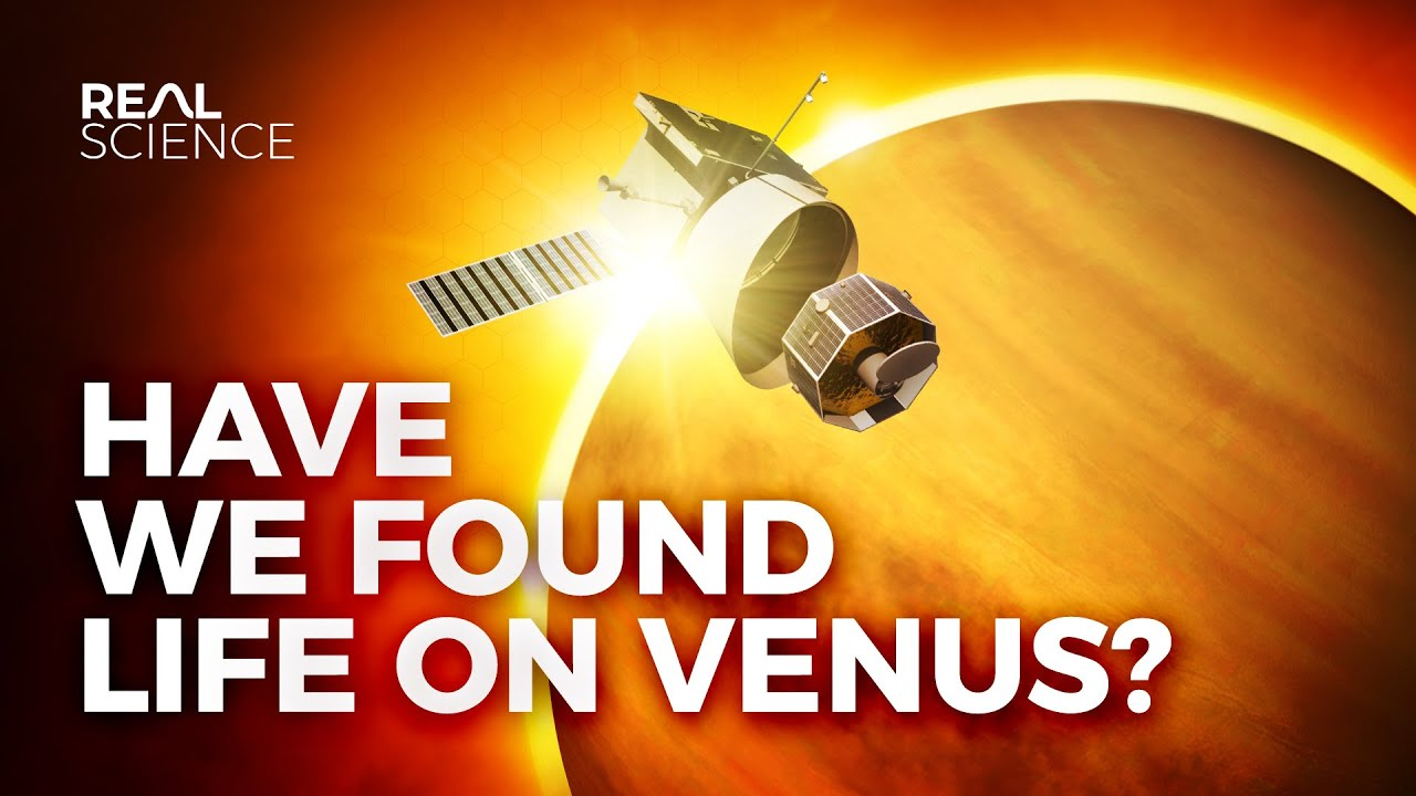 Have We Found Life on Venus?