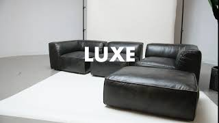 Luxe Collection from Moes Home