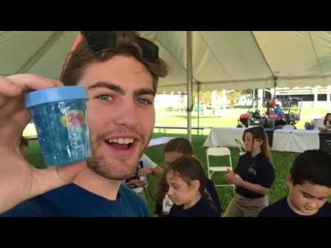 USFSP Video Corner: St  Petersburg Science Fest