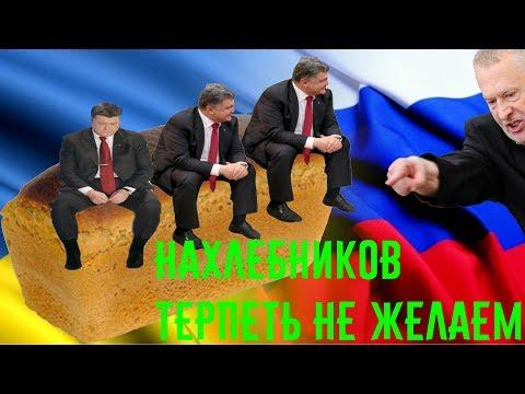 Жириновский. Подборка приколов