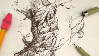 Pen and Ink Drawing Tutorials | How to draw a spiraling tree