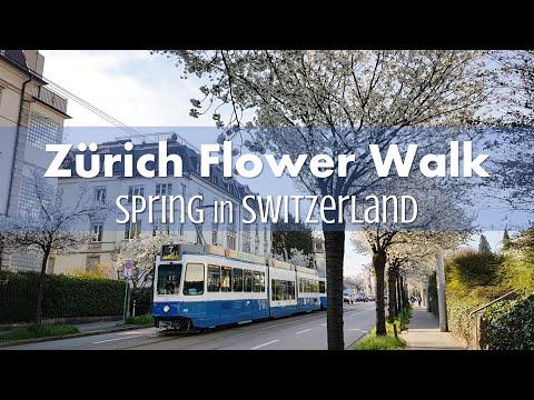 Zürich Spring Flower Walk for Families (2018)