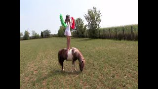 Film... Ester Zebrablond And Paint Pony Stallion Zar ... In Ireland Part 1