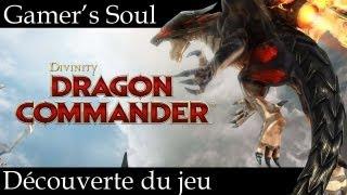 [Gamer's Soul] Dragon Commander : Découverte du jeu