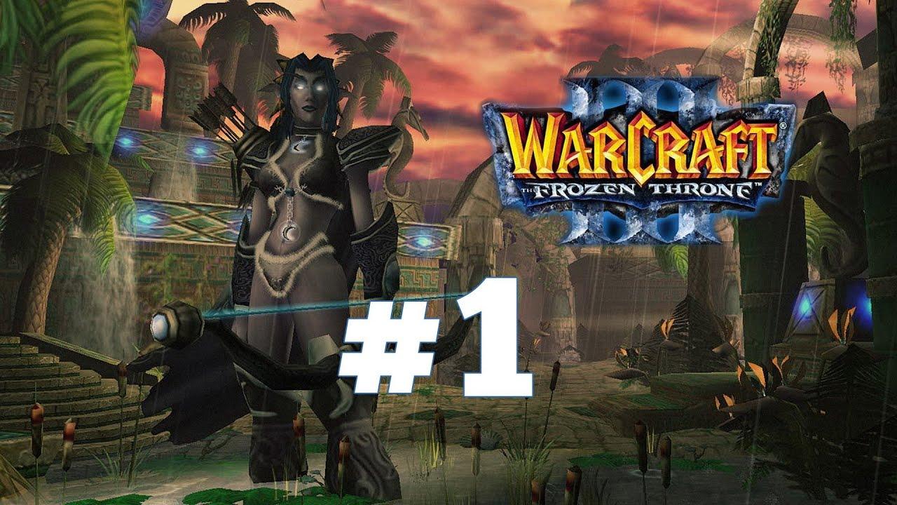 Скачать Кампанию для Warcraft 3 Паладин