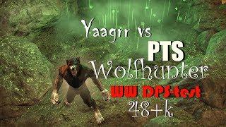 Yaagrr vs PTS Wolfhunter WW DPS test 48+k TESO