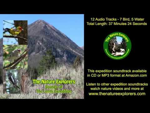 Lemhi Expedition Soundtrack Birds, Squirrels, Montana Temperate Rainforest Wildlife Nature Sounds