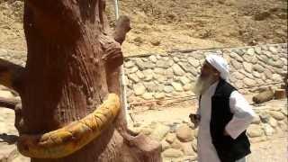 سيناء واستراحات جبل طور ووادي طوى2