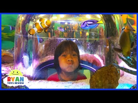 Ryan inside Sealife Aquarium with Emma and Kate for the first time!