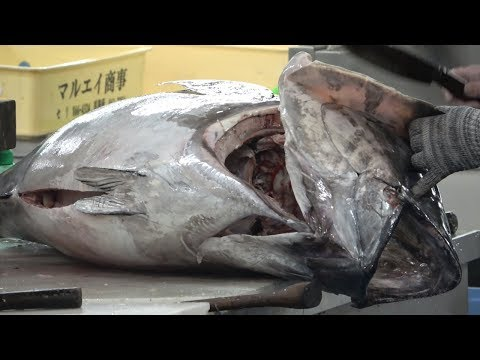 Japanese Street Food   Giant Yellowfin Tuna Cutting For Sashimi  Okinawa Seafood Japan