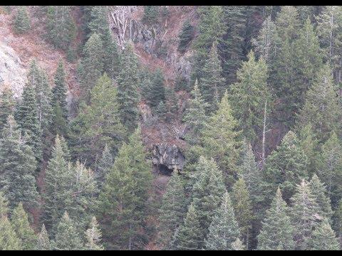 Bigfoot Spotted Twice Same Hunting Trip Challis & Salmon
