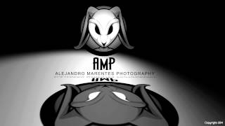 AMP Animation Logo
