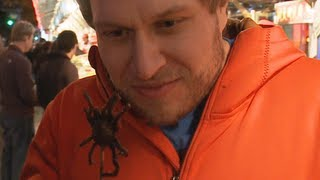 Eating a King Spider | Furious Pete