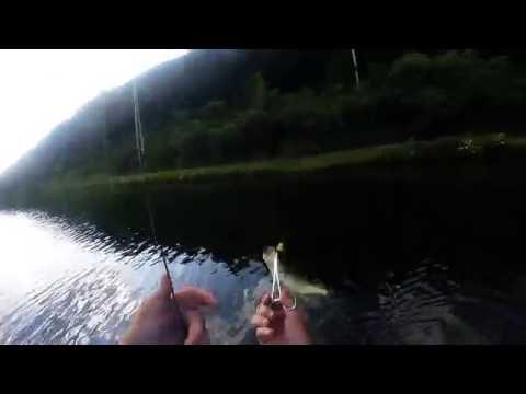 Lyman Lake Fishing 7-6-16