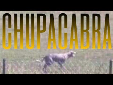 CHUPACABRA - CHORZELE