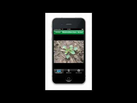 """top agrar-Pflanzenschutz-App """"top Unkraut"""" für iPhone und Android"""
