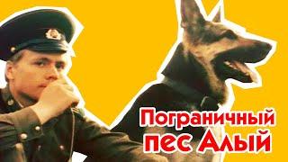 Пограничный пес Алый 1979