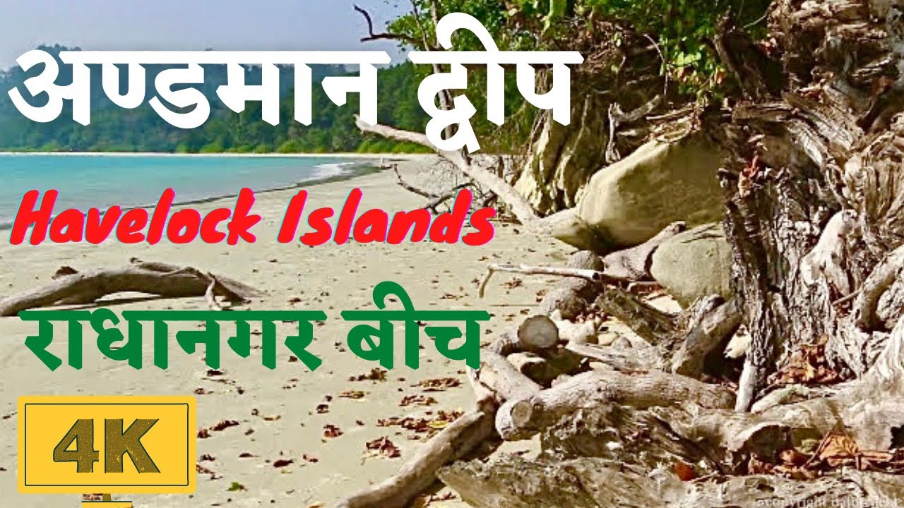 Andaman and nicobar islands in 4k india 39 s best for Andaman and nicobar islands cuisine