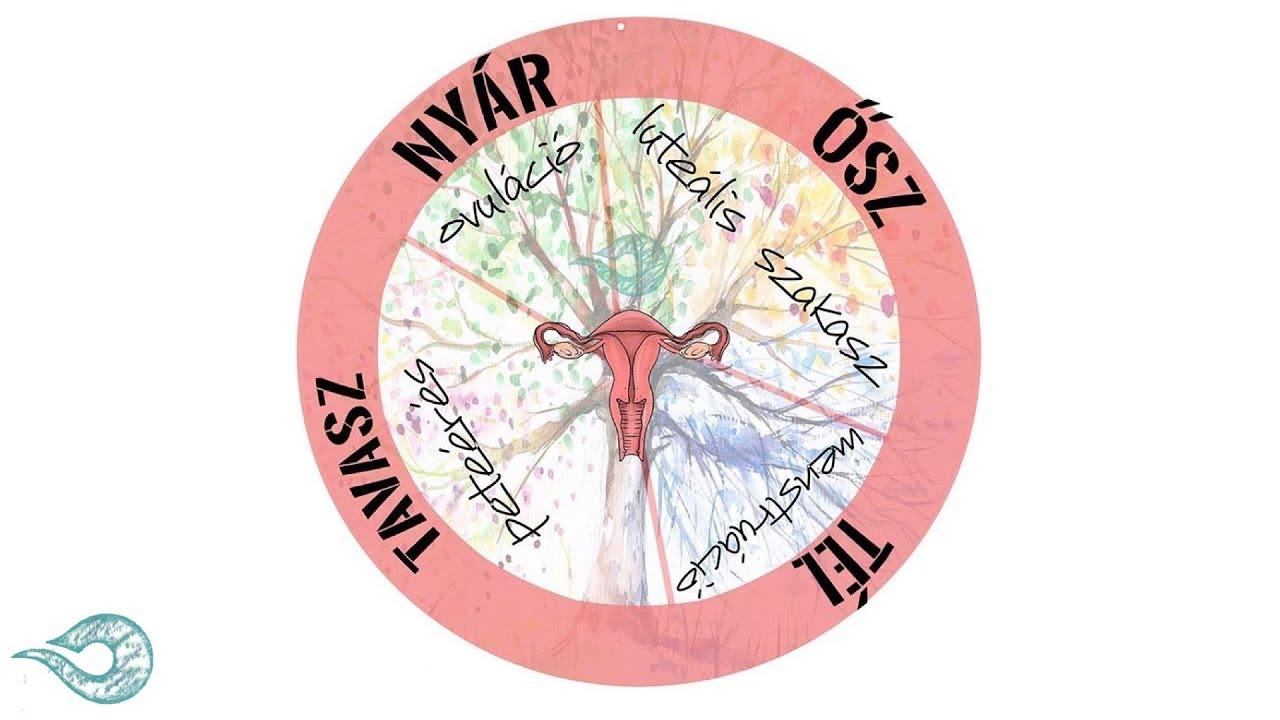 petesejtek és paraziták centrifugálással
