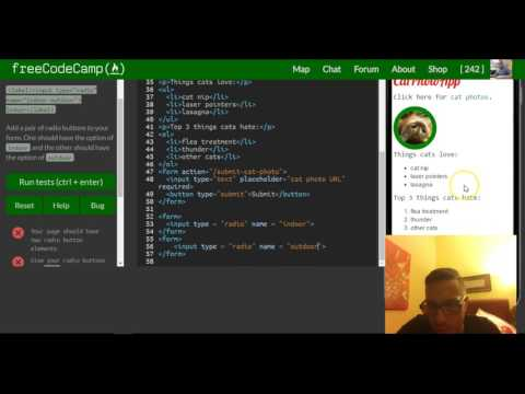Create a Set of Radio Buttons, freeCodeCamp review html & css, lesson 32