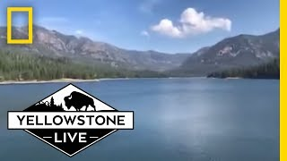 Stunning Views LIVE From Hyalite Canyon | Yellowstone Live