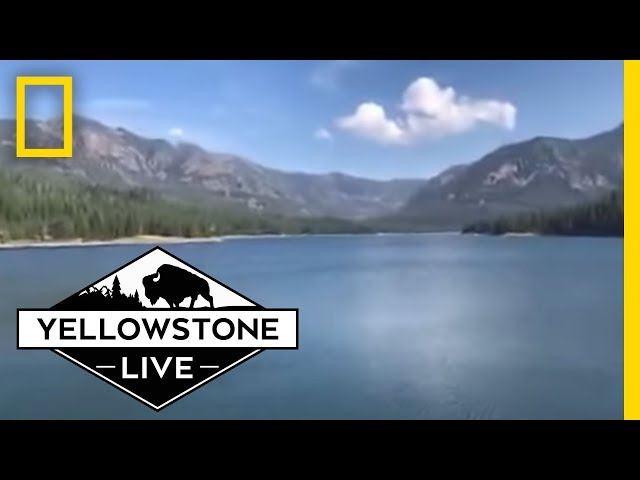 Stunning Views LIVE From Hyalite Canyon   Yellowstone Live
