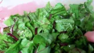 Preparing Meals-beet Greens-sparky's Kitchen