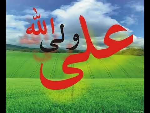 Aise Hote Hain ALI(a.s.) Ke Nokar. Mir Hassan Mir 2009 Munqabat