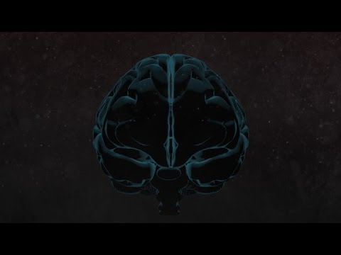 A peek inside a murderer's brain