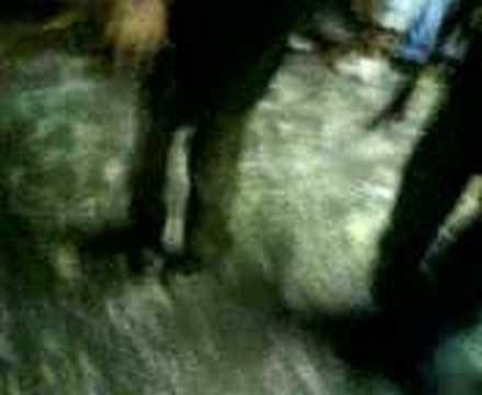 Video De Sexo No Carnaval Desalao De Sao Paulo 109