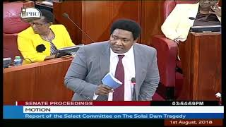 Motion: Report of the Select Committee on The Solai Dam Strategy   1st August 2017