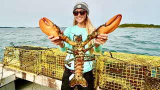 MASSIVE North Atlantic LOBSTER {Catch, Clean & Cook} Pulling Traps!