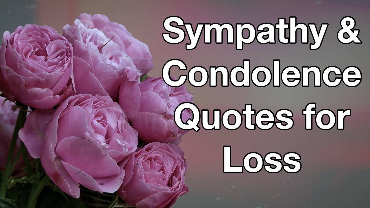 16 Sympathy Condolence Quotes For Loss Youtube