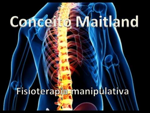 Conceito Maitland - Fisioterapia Manipulativa